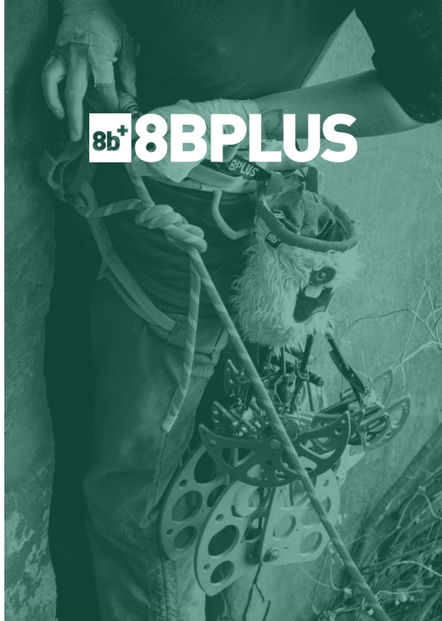 8Bplus